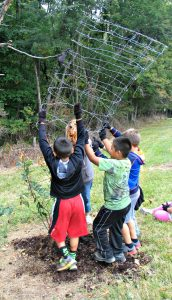 Erecting wire fence