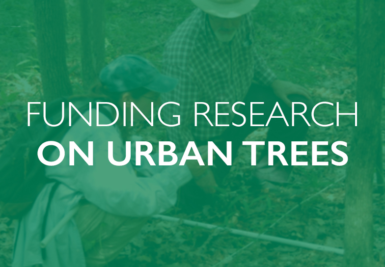 TREE Fund – Tree Research & Education Endowment Fund