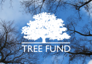 January 2020 News from TREE Fund